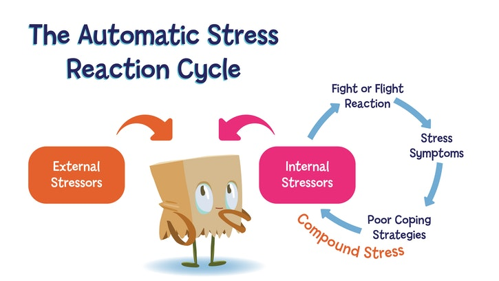A diagram of the automatic stress reaction cycle