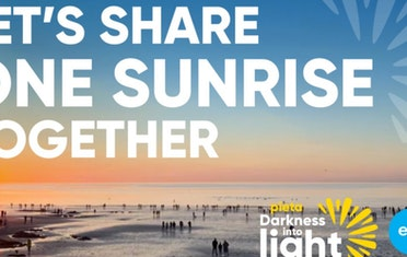 Image for Brown Bag Labs entry Fundraising for Darkness into Light 2021